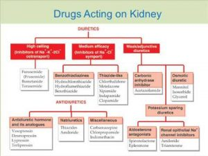how to study pharmacology